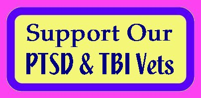 Support Our PTSD and TBI Veterans